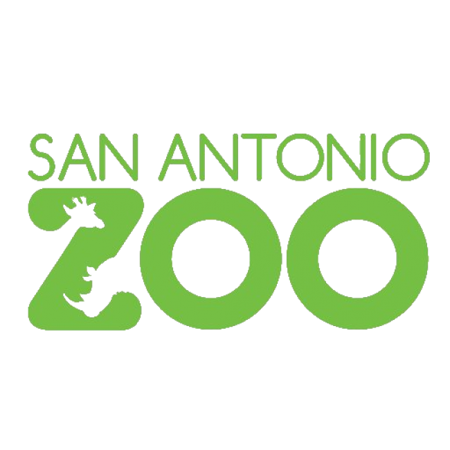 Top 20 Places To Take Kids In And Around San Antonio