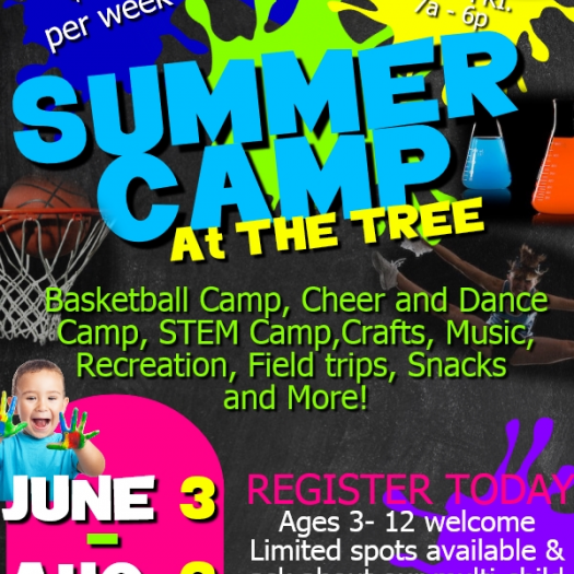 Basketball camp, cheer and dance camp, STEM camp, recreational sports, arts and crafts, fieldtrips and meals included.